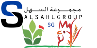 Salsahl Group logo